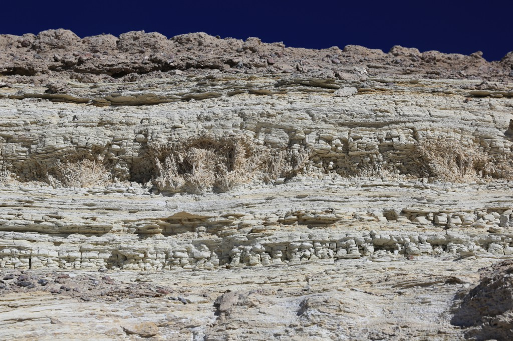Layers of calcium sulfite show the rich history this area has experienced with different types of animals and plants having existed there long ago.
